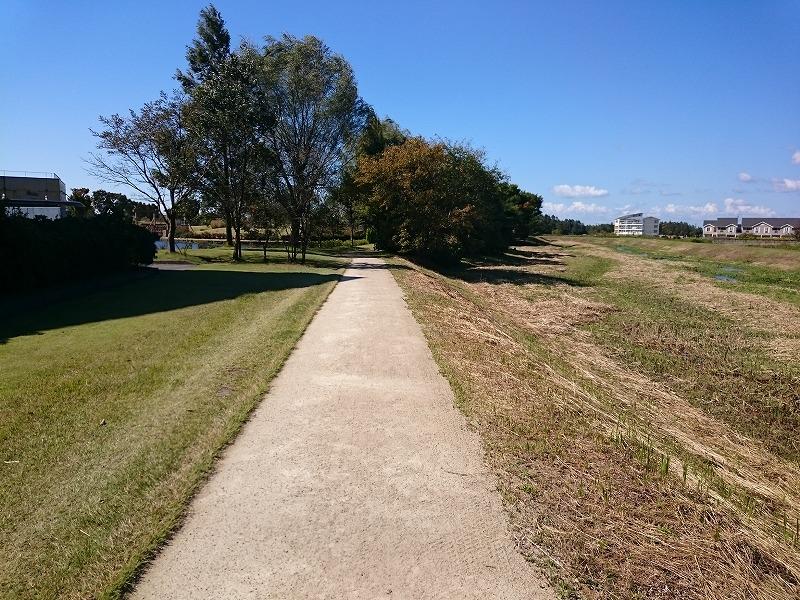 黒部総合運動公園 透水性保水型土系舗装の園路